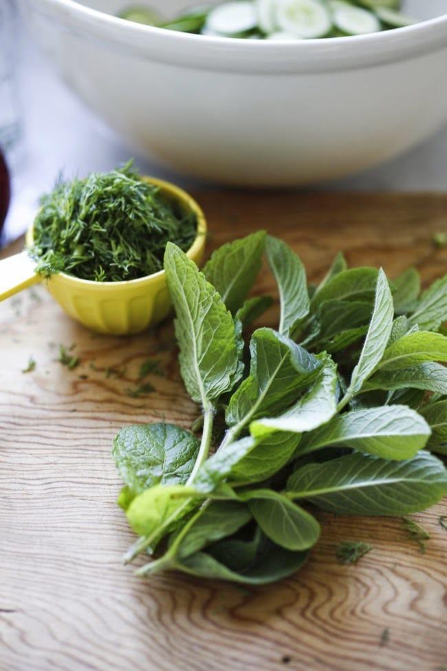 Cool and creamy Turkish Cucumber Salad with fresh dill, mint, lemon and yogurt | #cucumber #cucumbersalad #salad #cucumbers | www.feastingathome.com
