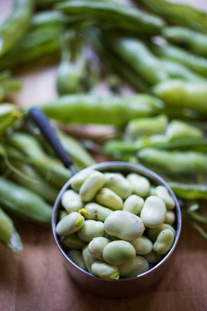Wondering how to cook fava beans? These Simple Marinated Fava beans (with olive oil, vinegar, garlic, lemon zest, and fresh herbs) are one of my favorite ways to prepare them! Vegan, versatile and delicious!  Use these on toast or bruschetta, in salads or on cheese boards or Mezze platters! Easy and delicious! #fava #favabeans #freshfava #favabeanrecipes #howtocookfavabeans |www.feastingathome.com