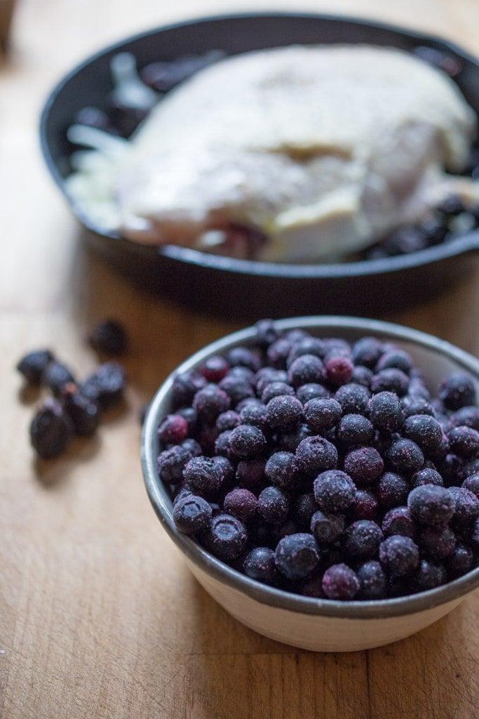 Blueberry Turkey-103