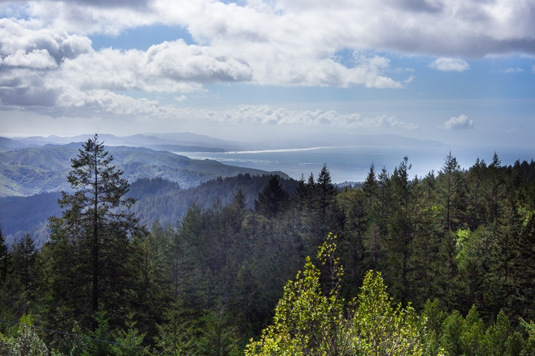 Trail to East Peak- Mt Tamalpais State Park- | feastingathome.com