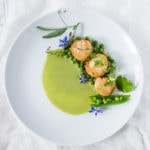 Seared Scallops with Spring Peas and Tarragon, a simple elegant dinner using fresh spring peas. | www.feastingathome.com
