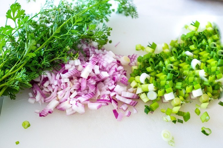 chopped onion and scallions with cilantro on the side